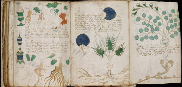 Voynich Elyazması - İtalya